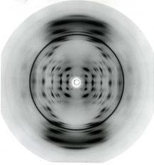 DNS 1.jpg
